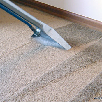 RPM Carpet cleaning services at home